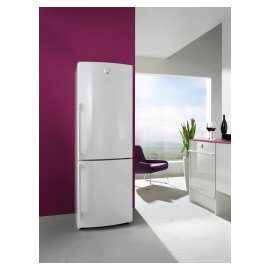 Gorenje Simplicity - fridge freezer.