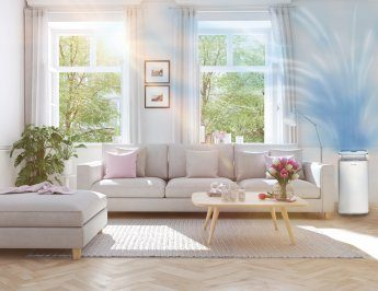 7 ways to get cleaner air at home