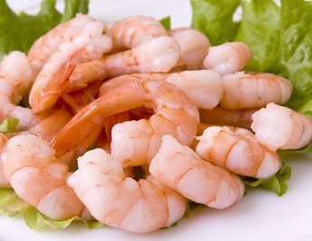 Shrimps (SousVide)
