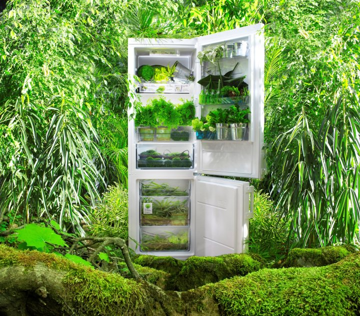 Make life simpler to win an IonAir fridge