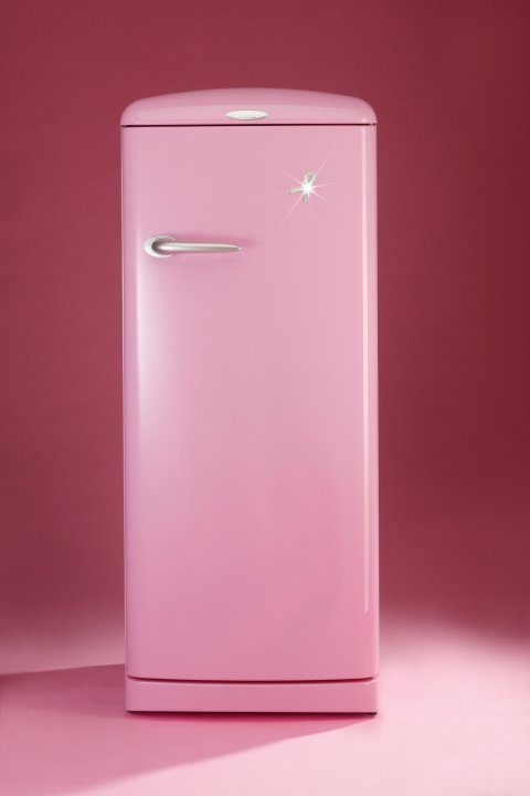 Fourth pink refrigerator with a precious ribbon sold at a charity auction